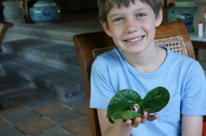 Fletcher with a snail he found in our yard